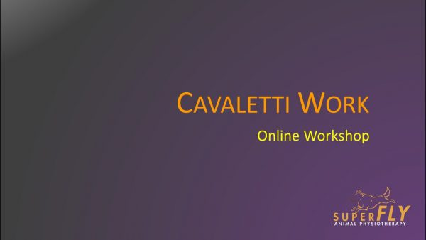 Online Cavaletti Workshop